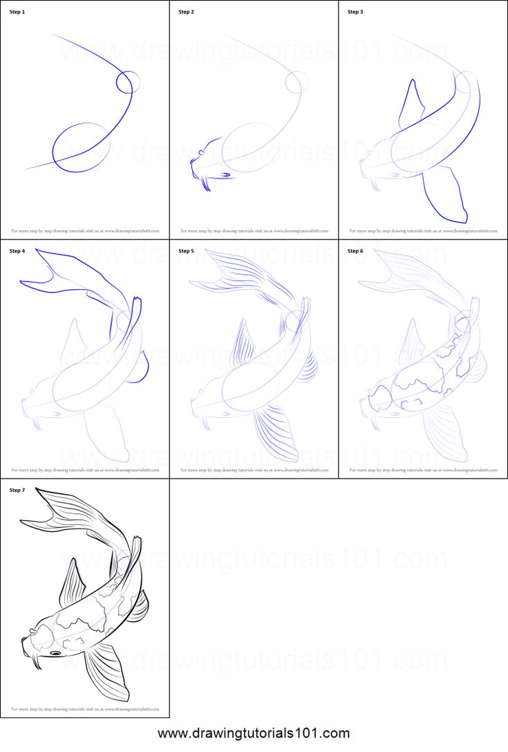 How to Draw a Koi Fish Printable Drawing Sheet by DrawingTutorials101.com