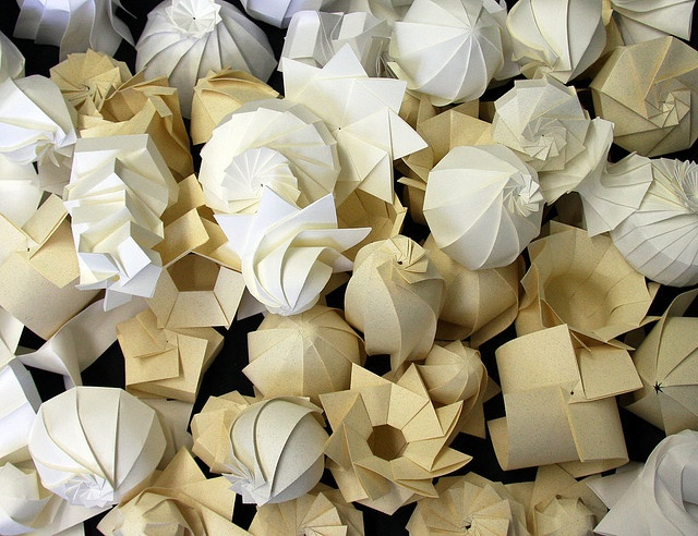 Paper Shells by Jun Mitani, via Flickr