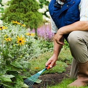 1000 images about exercises for seniors on pinterest muscle burn calories and health for How many calories does gardening burn