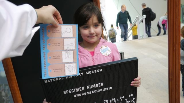 This Curious Collector managed to collect all four stamps on her research permit: excellent work!
