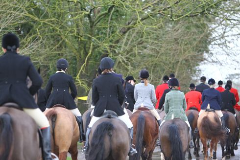Never been hunting before, but would love to go in 2015? Follow our useful beginner's guide to get the most from your day. Read more at http://www.horseandhound.co.uk/archives/a-beginners-guide-to-hunting/#IDAhLuy37H1ODZCR.99