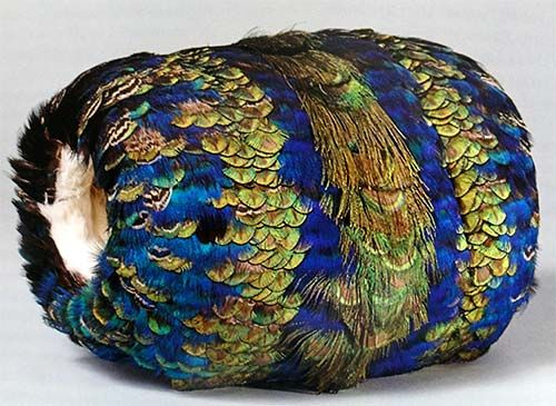 Manchon en plumes de paon, bordé d'hermine blanche, 1860-1870. (Muff decorated with peacock feathers and lined with white ermine.) From the House of Colours, chambredescouleurs.france-i.com