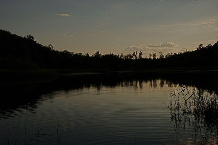 Kvällspromenad vid sjön.