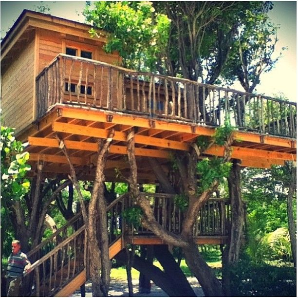 This Ecuadorian Mansion Comes With A Ridiculously Cool: 1133 Best Images About Tree Houses On Pinterest