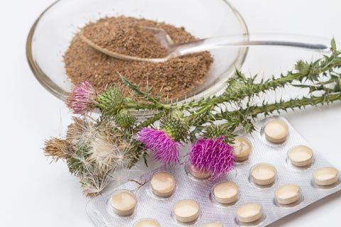 Milk Thistle Herbal Medicine