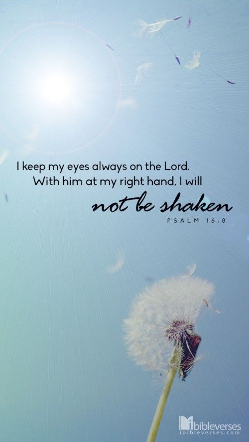 I will not be shaken - iBibleverses :: Collection of Inspiration Bible Images about Prayer, Praise, Love, Faith and Hope