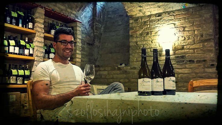 Peter Benedek, the winemaker http://bortabor.blog.hu/2016/07/04/az_ujvilag_apro_csokja_az_ovilag_dombjain