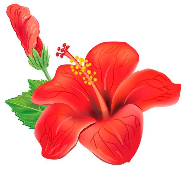 17 Best ideas about Flower Clipart on Pinterest | Doodle flowers ...