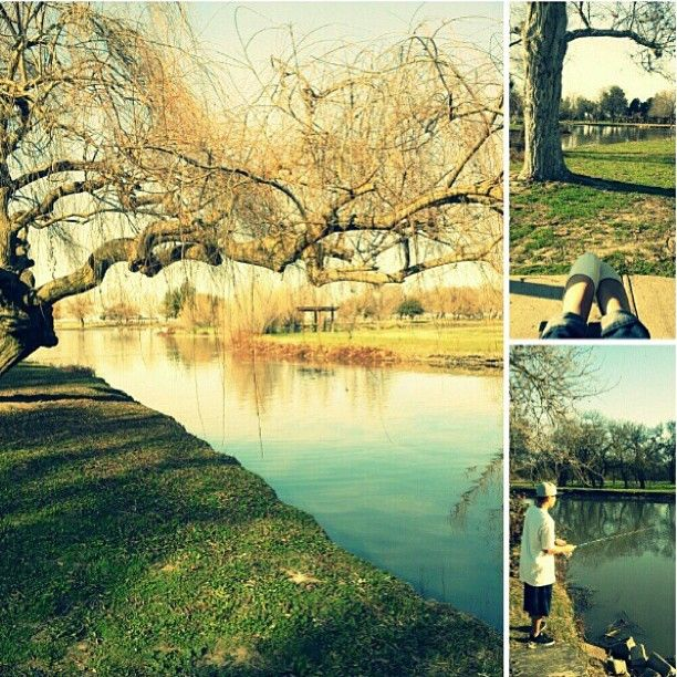 17 Best Images About Stockton California Attractions Things To Do On Pinterest Parks Minor