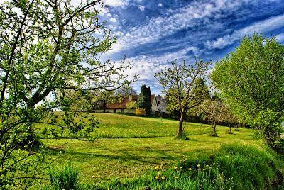 NINIVESKAL: Na paloučku, na malém vršíčku stojí pěkné stromořa...