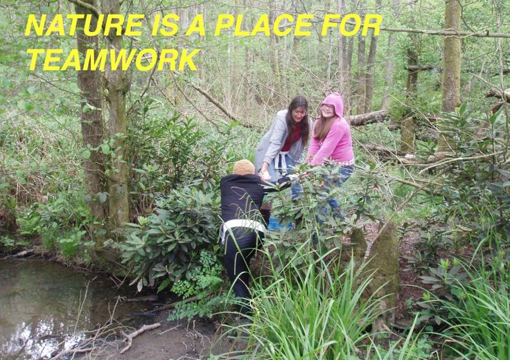 #45 A great fourth entry from Philpots Manor School: 'Nature is a place for teamwork'.