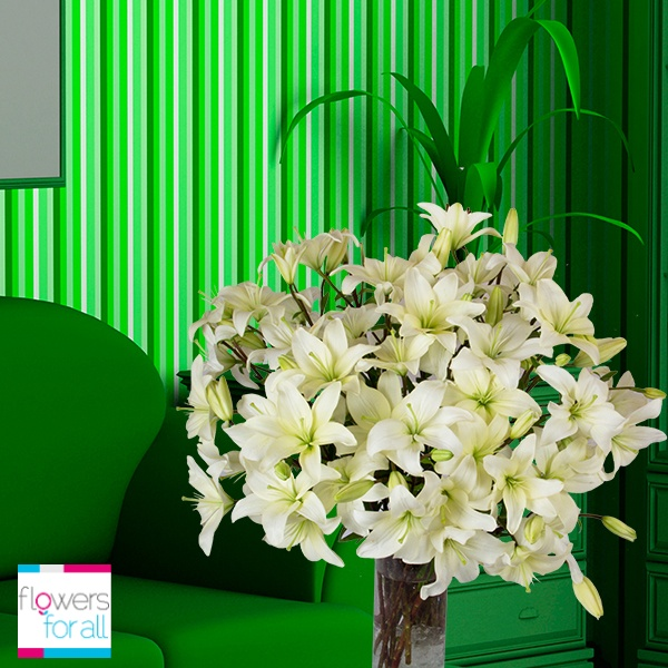 Our White Lilies are elegant and beautiful at the same time! White is an ideal tone to constrat with a colorful room. Find various white flowers at Flowersforall.com!