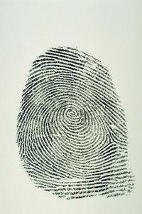 How to Explain Fingerprints to Children thumbnail
