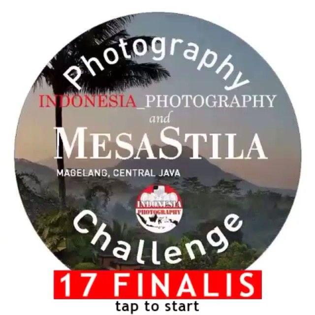 MesaStila Challenge