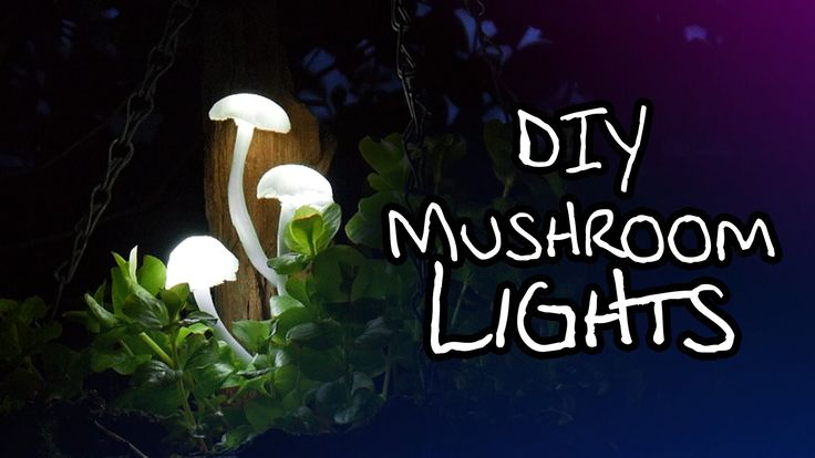 In this video we'll be making some really charming mushroom lights! Here are the LEDs we'll need: https://www.amazon.com/gp/search/ref=as_li_qf_sp_sr_il_tl?i...