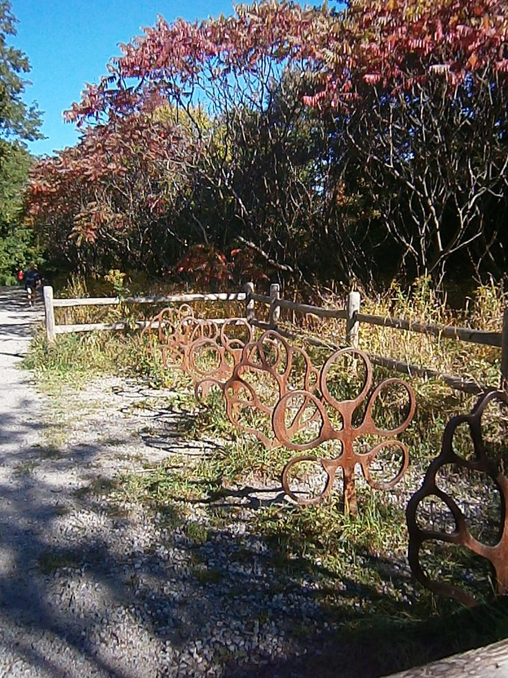 Toronto ravine with fall colors and an artsy bicycle rack. http://babybirdguide.com/guide-to-toronto/