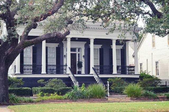 Southern Homes in New Orleans