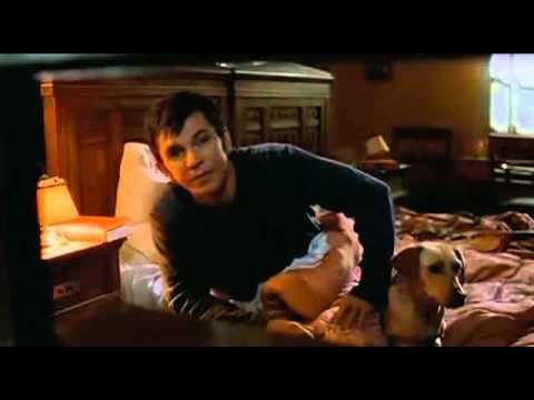 ZIVOT JE CUDO ceo film 2004 - http://filmovi.ritmovi.com ...