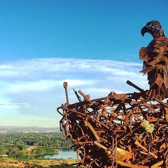 """""""Looking down over her kingdom."""" Instagrammer @lrlc82 photographed this sculpture at the National Arboretum Canberra. A striking metal sculpture of an Australian wedgetail eagle on its nest, Nest III was made from welded steel found-objects by Richard Moffatt in 2007 and sits at the top of Dairy Farmers Hill. #visitcanberra"""