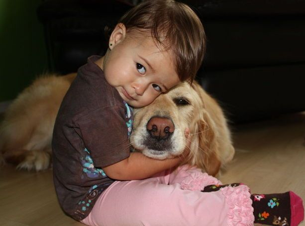 Best Babies And Pets Images On Pinterest Dog Baby Friends - 23 adorable photos proving babies need pets