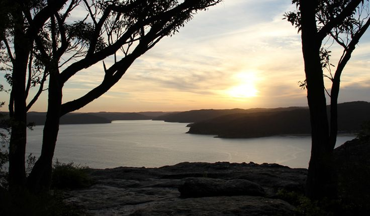 Patonga to Pearl Beach walk, Brisbane Water National Park. Photo: John Yurasek