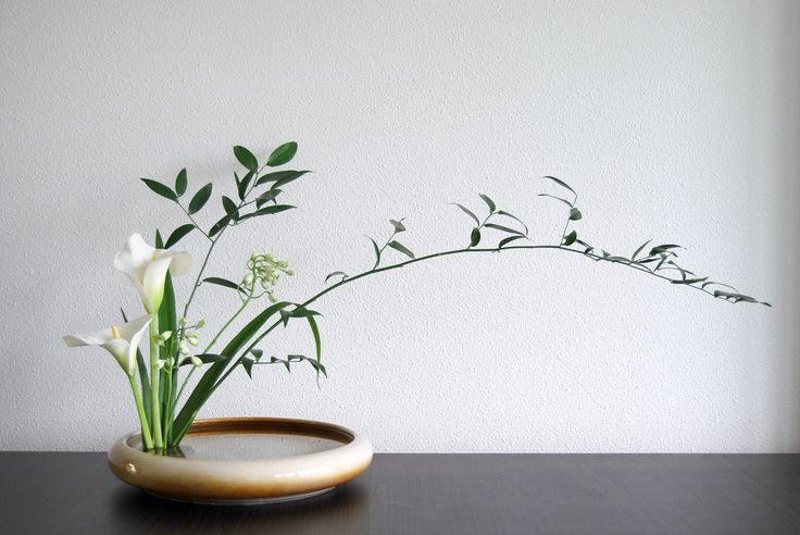ikebana menu                                                                                                                                                     Mais