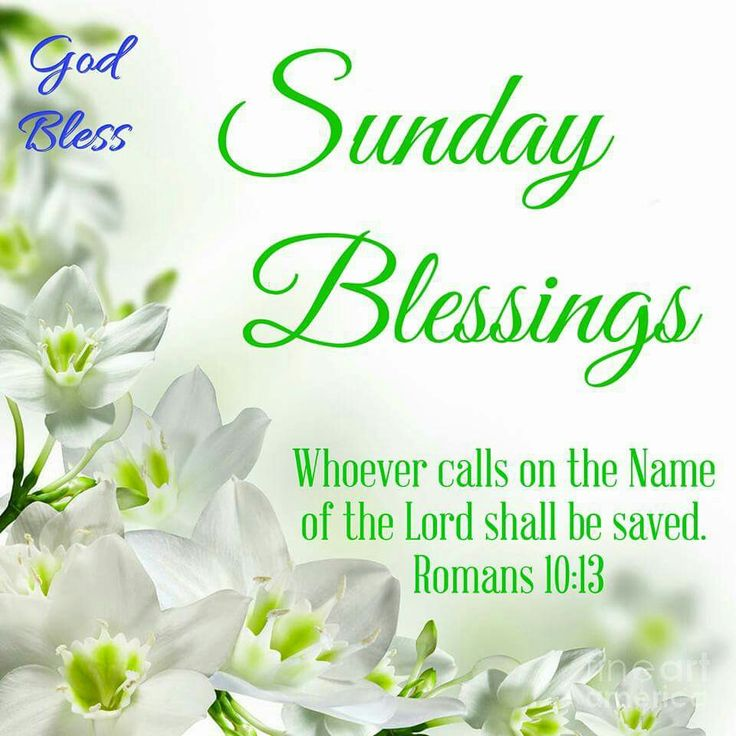 Good Morning Sunday Bible Verses : Best romans images on pinterest bible quotes