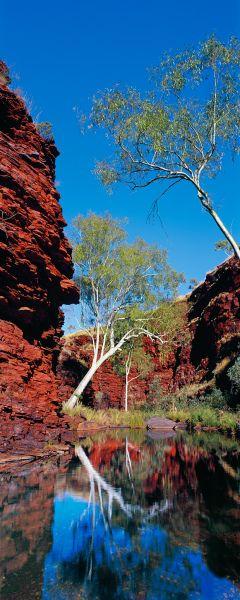 Outback Reflections, Australia #australianoutback