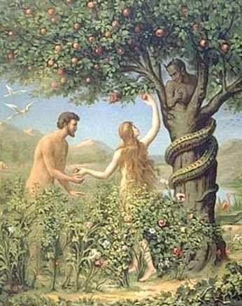 Čtete Bibli…??? Tak trochu zkráceně: Genesis- prvních 6 dní Bůh tvořil, všechno od Světla, Země, Nebe, oddělil vody Nebeskou Klenbou (Plochá Zem a Kopule), udělal pevninu, moře, přírodu, všechny zvířata a jako třešničku udělal: Muže a Ženu k Obrazu Svému, jako jsou oni.. poslal je na Zem, dal jim instrukce, řekl- množte se a obydlete Zem.. atd… Sedmej den odpočíval, a všechno bylo Dobrý…