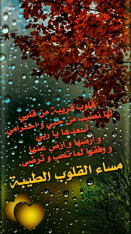 مسآء القلوب الطيبة Good Evening Greetings Evening Quotes Good Morning Gif