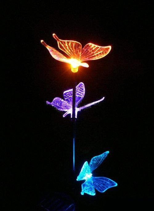 Butterfly solar lights.