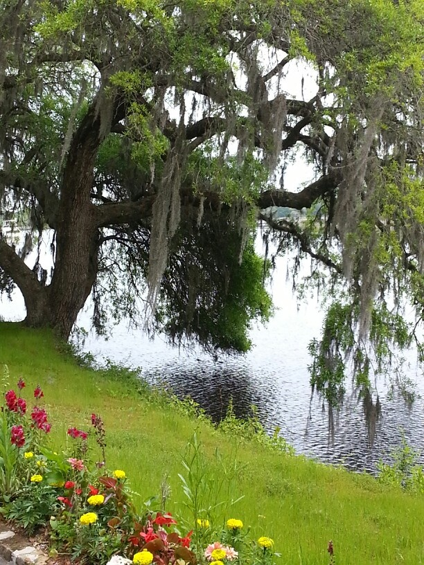 12 Best Gardens I Would Like To Visit Images On Pinterest Botanical Gardens Beautiful Places