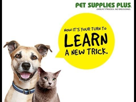 Pet Supplies Plus: Reading The Front Of the #Pet Food Bags - YouTube #dog #cat
