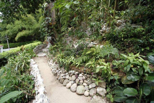bordure en pierres décoratives et plantes