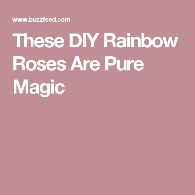 These DIY Rainbow Roses Are Pure Magic