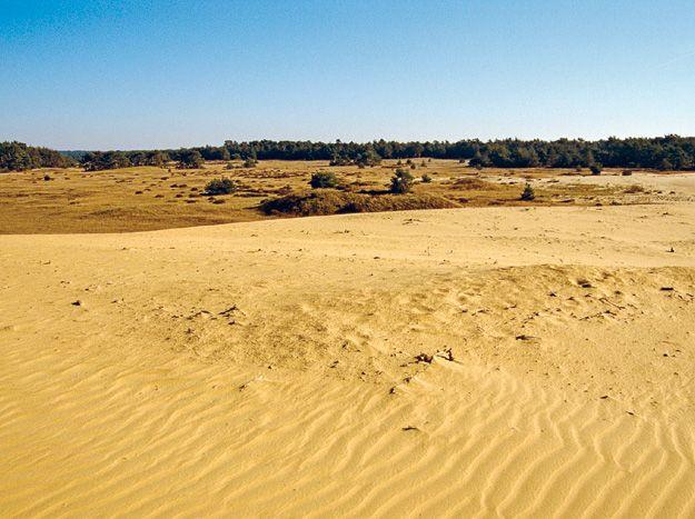 Lange Duinen NS 10-22km