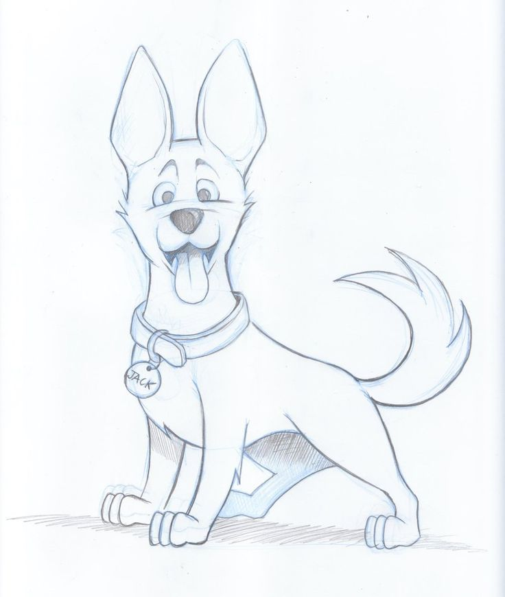 drawings of dogs | Kelpie Dog Sketch by ~timmcfarlin on deviantART