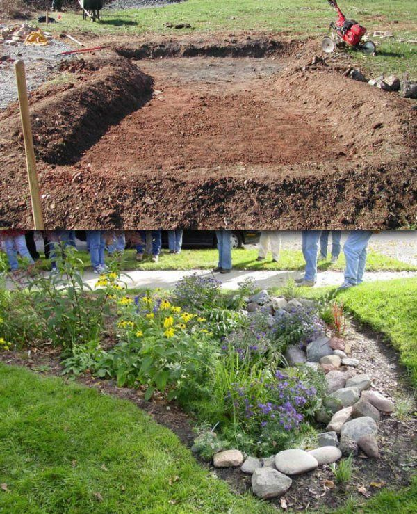 Rain Garden Before After Rainwaterharvestingdesign Rain Garden Design Rain Garden Backyard Landscaping