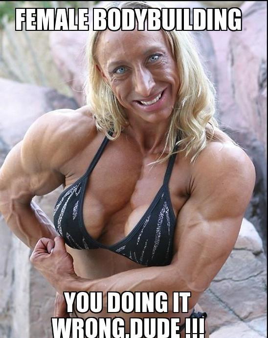 97793080b90ce79d63cc7ac3ec092da7 katie hopkins bodybuilding memes 370 best health images on pinterest bodybuilding, bodybuilding,Bodybuilder Girl Meme