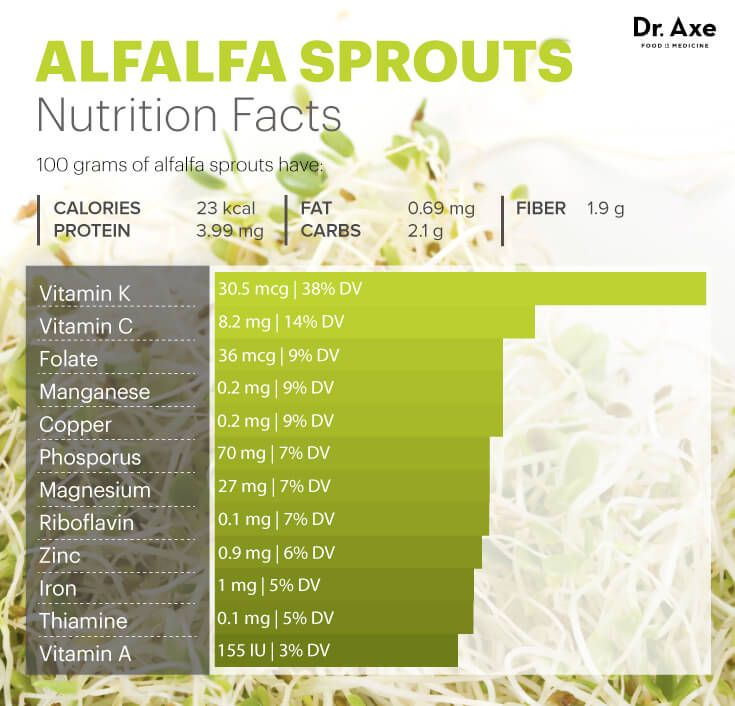 Alfalfa sprouts nutrition - Dr. Axe http://www.draxe.com #health #holistic #natural