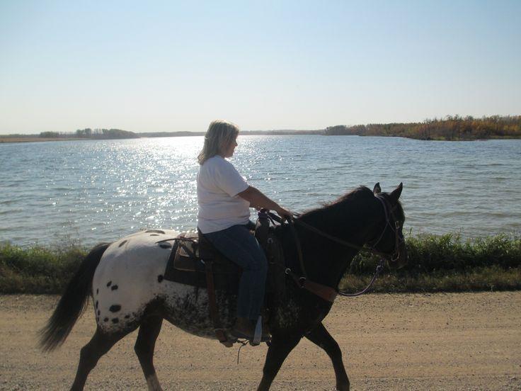 Going for a horseback ride along the water front #lucienlake #horseback #lakelife #waterfront #lakesideacreages #lakesidelots #horses