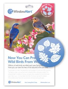 Leaf Medley Decal Envelope- 5 decal pack. Stop birds from hitting your windows.