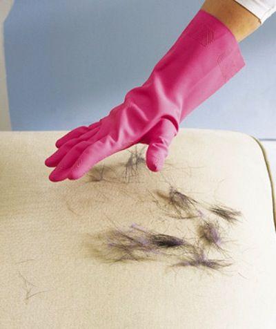 Utiliser un gant en caoutchouc pour enlever les poils d'animaux