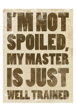 """I'm not spoiled, my master is just well-trained."""