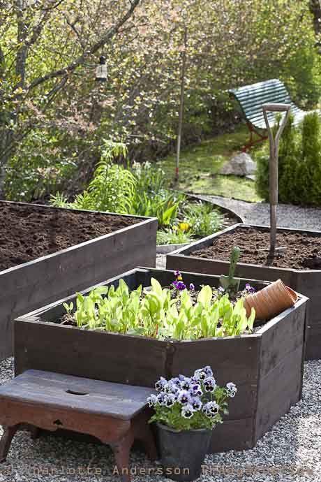 Raised flower beds