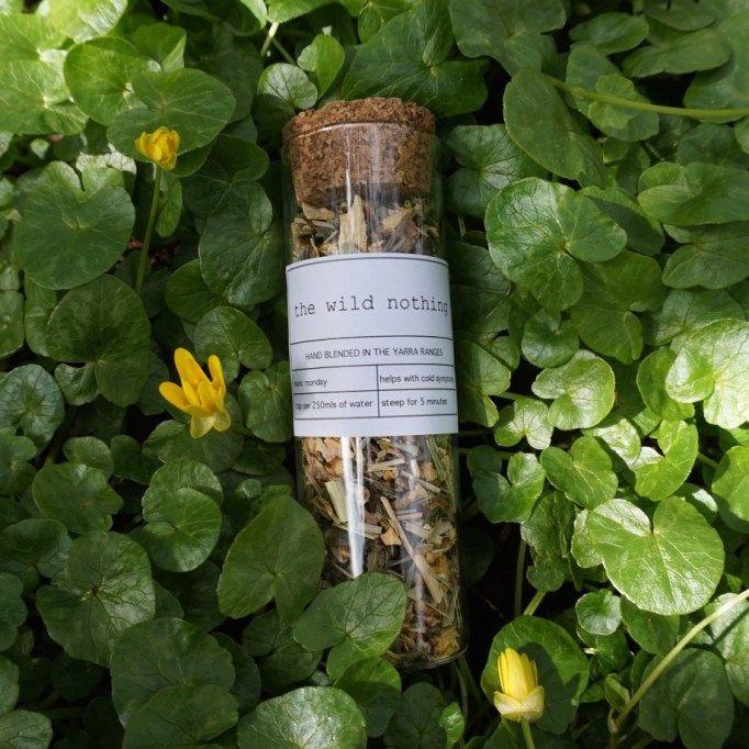 manic monday test tube, cold and flu tisane, immune booster tisane with ginger and lemongrass