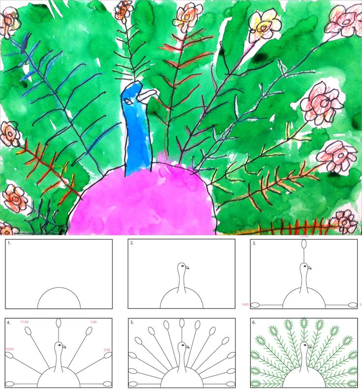 Art Projects for Kids: How to Draw a Peacock step by step plus slide show. K-second grade. radial symmetry