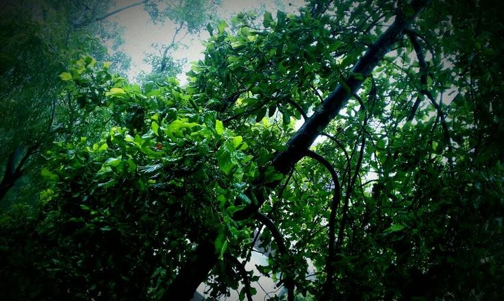When it rains in Mumbai