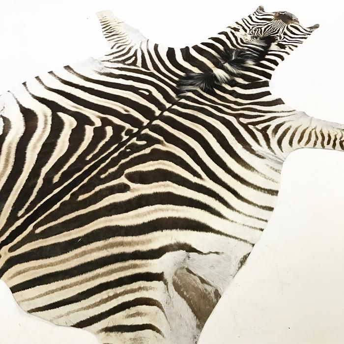 Shop our collection of one of a kind authentic zebra hide rugs, cowhide rugs, and sheepskins.