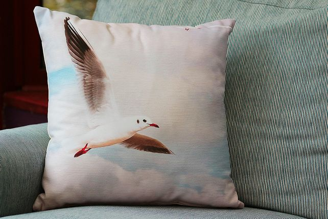 SEAGULL - CUSHION COVERS INSPIRED BY NATURE FROM LISA COCKRELL PHOTOGRAPHY £14.99